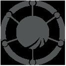 CDE Icon